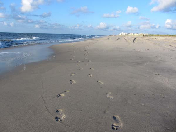 BeachSteps