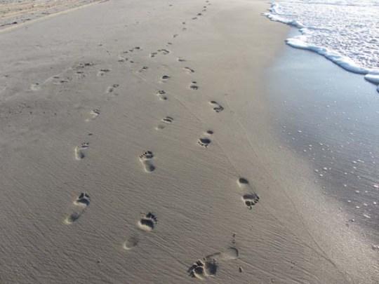 BeachSteps3