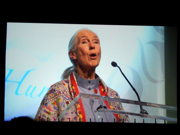 Jane Goodall embodied peace, power, poise, humility, and harmony.