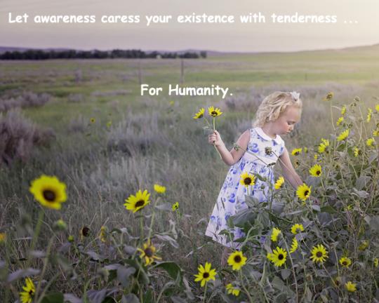 05.AwarenessCaress