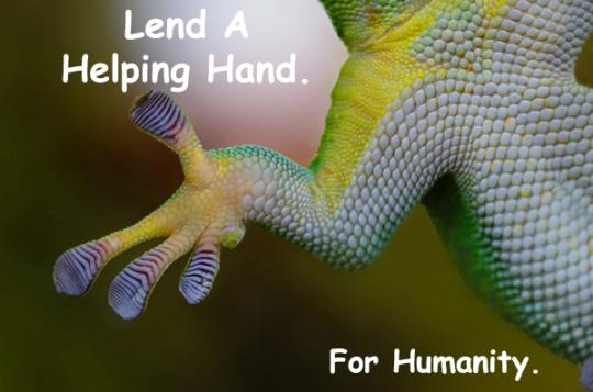 100.HelpingHand