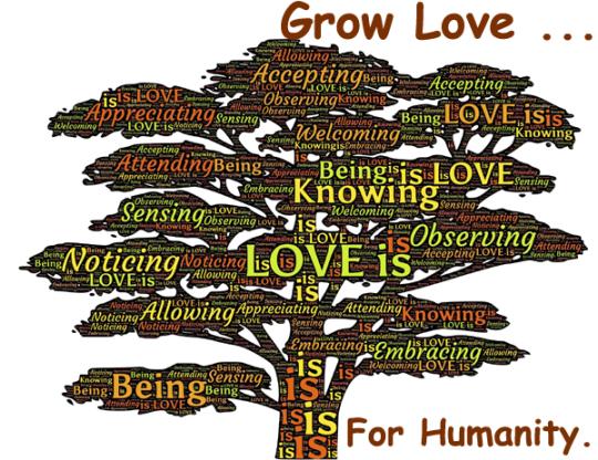 165.GrowLove