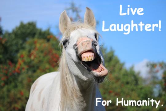 166.Laugh