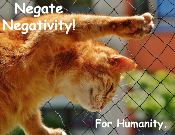 194.NegateNegativity