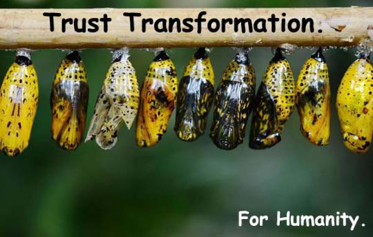 271-trusttransformation
