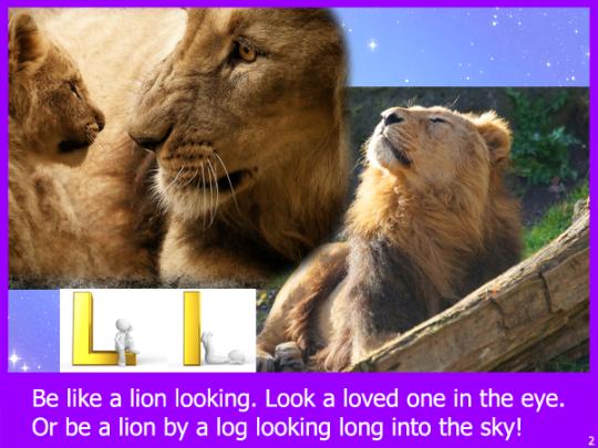 lionl02