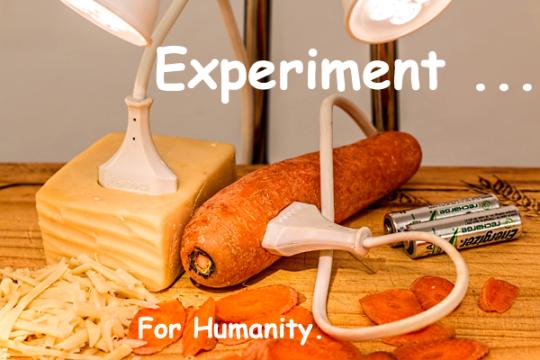 333-experiment